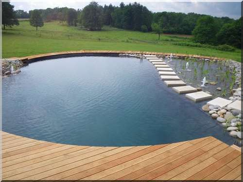 Bassin Naturel Piscine Toulouse - Maison Design - Trivid.us