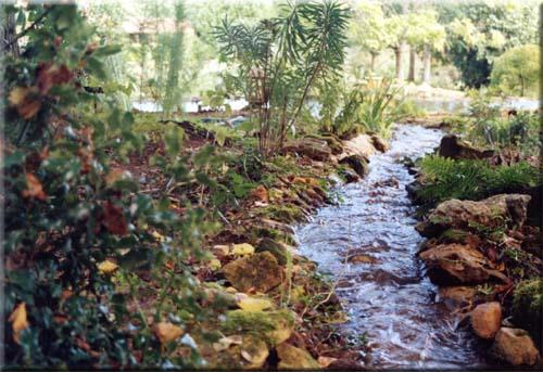 http://www.le-jardin-des-lotus.com/images/ruisseau.jpg